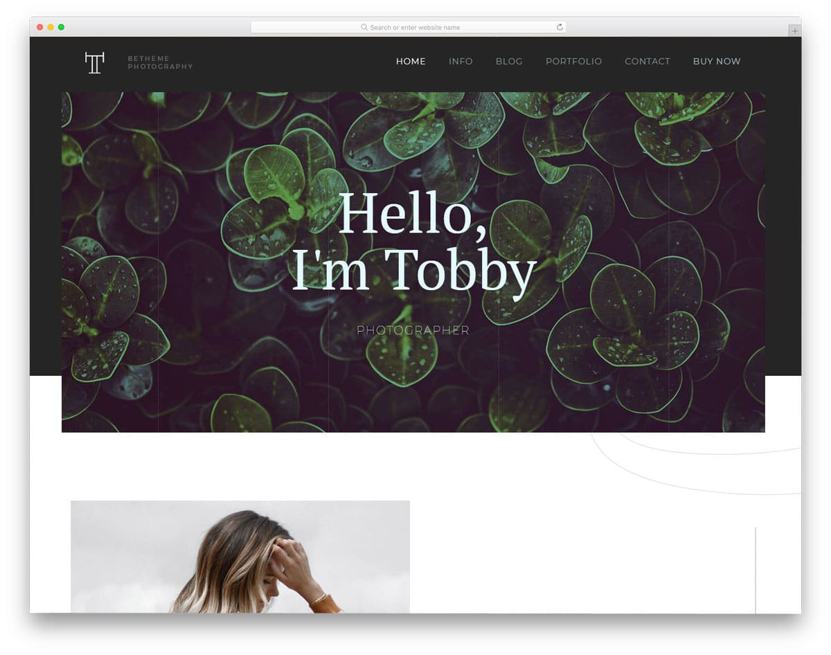 accessible WordPress theme for photography websites