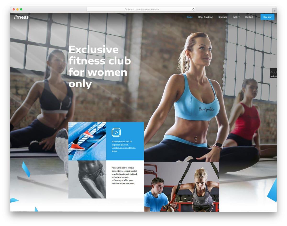 interactive wordpress theme fitness studios