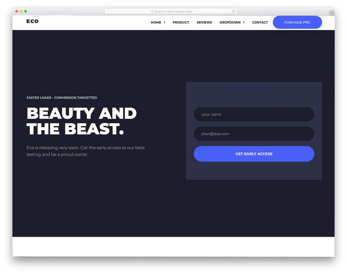product landing page with pre-order form