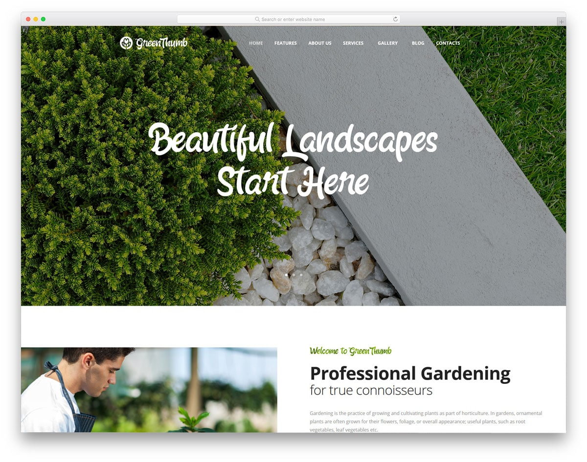 contemporary style landscaping website templates