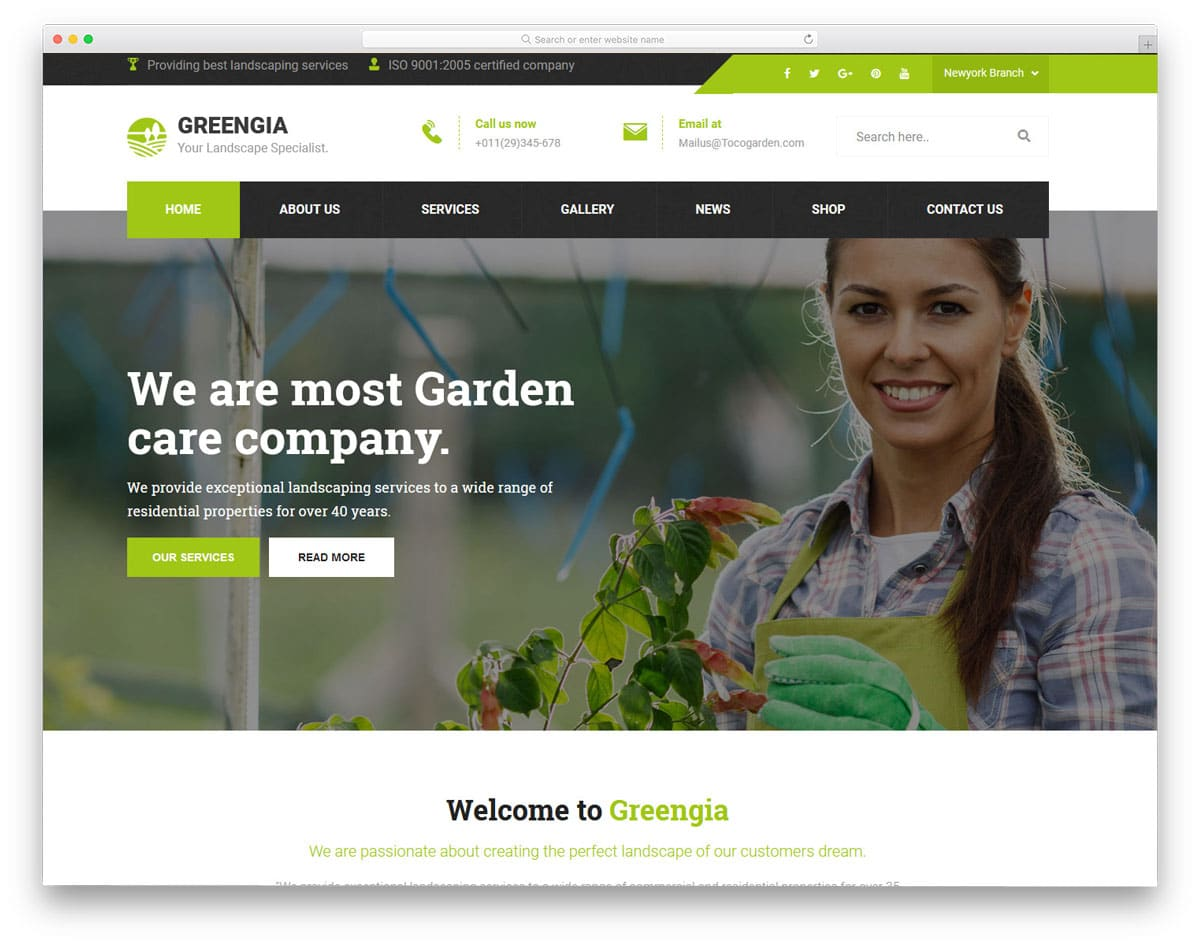 wordpress theme to clearly explain your services