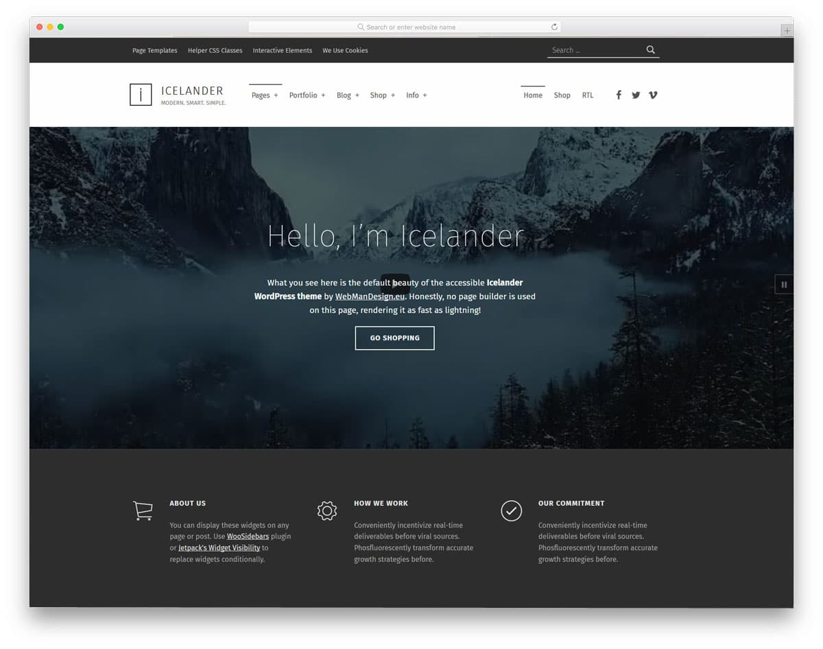 accessible WordPress themes for personal and business websites