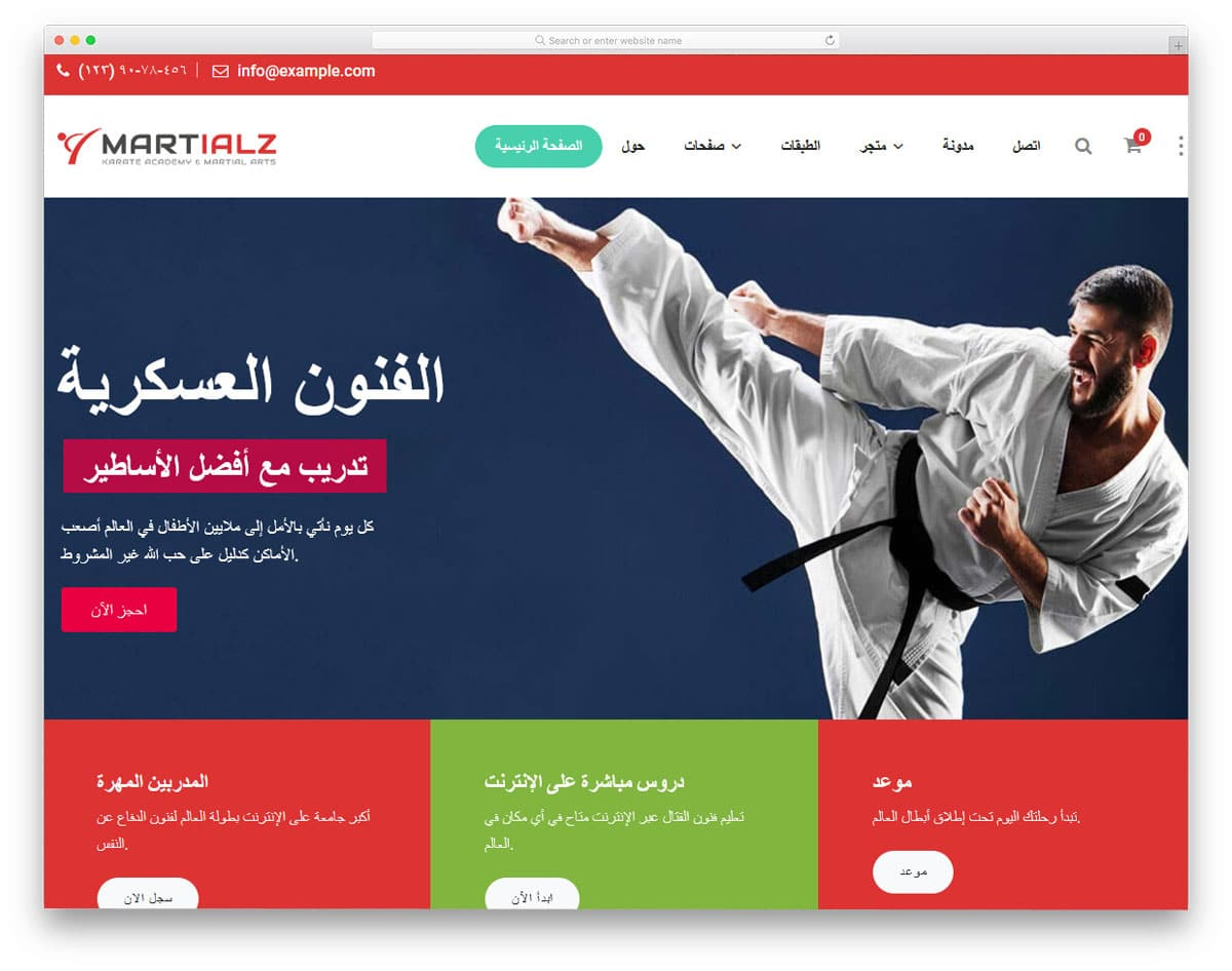 martial arts wordpress themes with RTL support