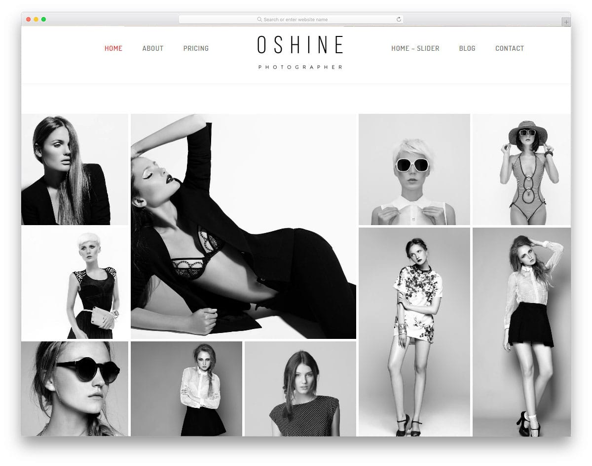 wordpress theme for actors and models