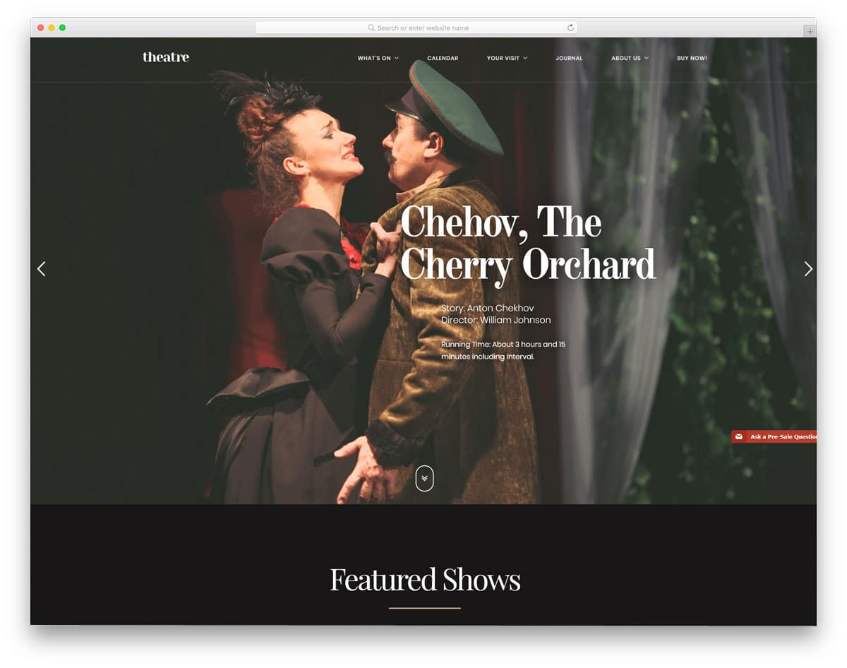 WordPress theme for theaters with artistic touch