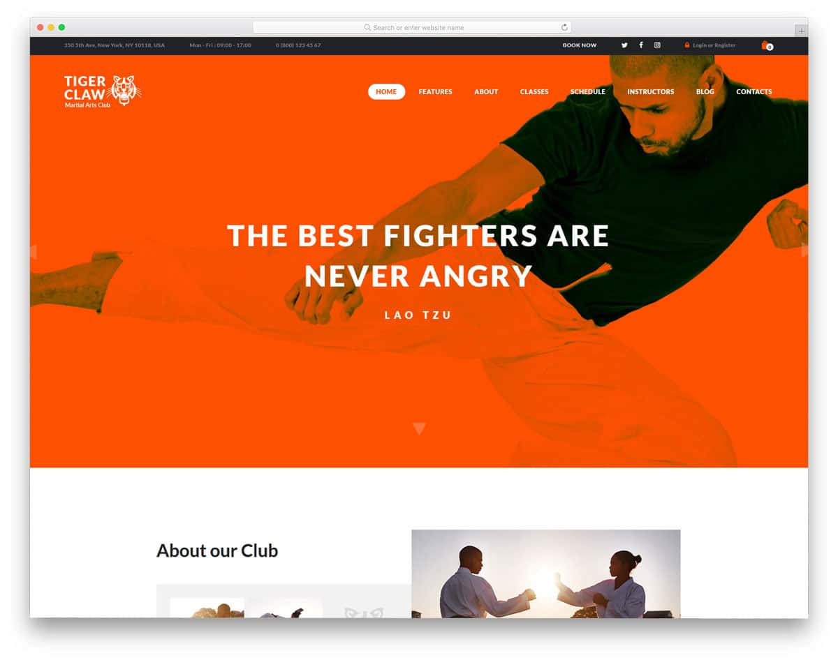 martial arts wordpress themes for personal trainer