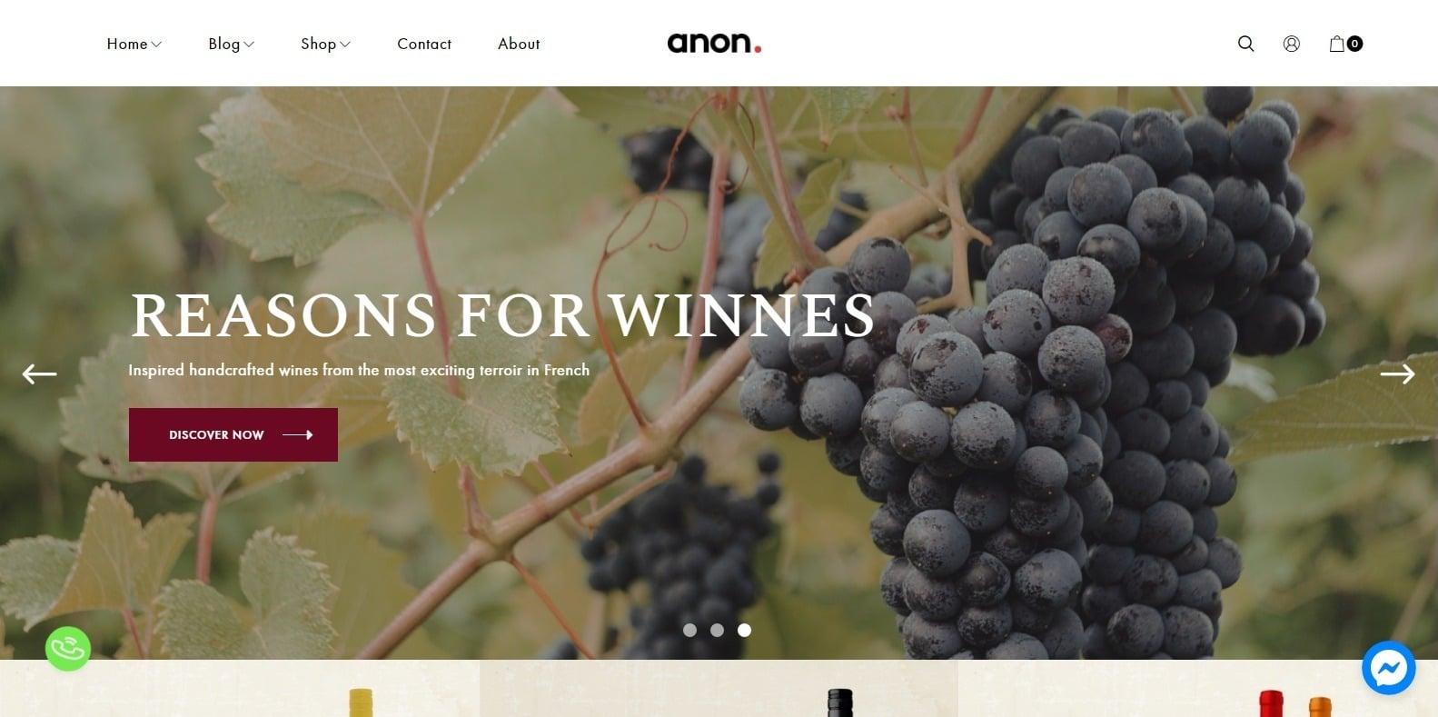 anon-multipurpose-website-template