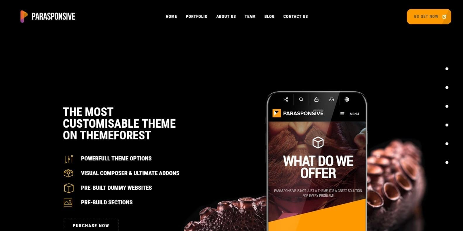 parasponsive-parallax-website-template