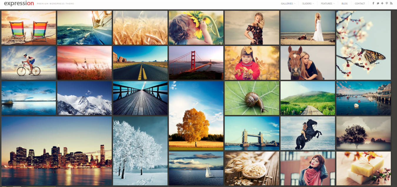 photo gallery website templates expression