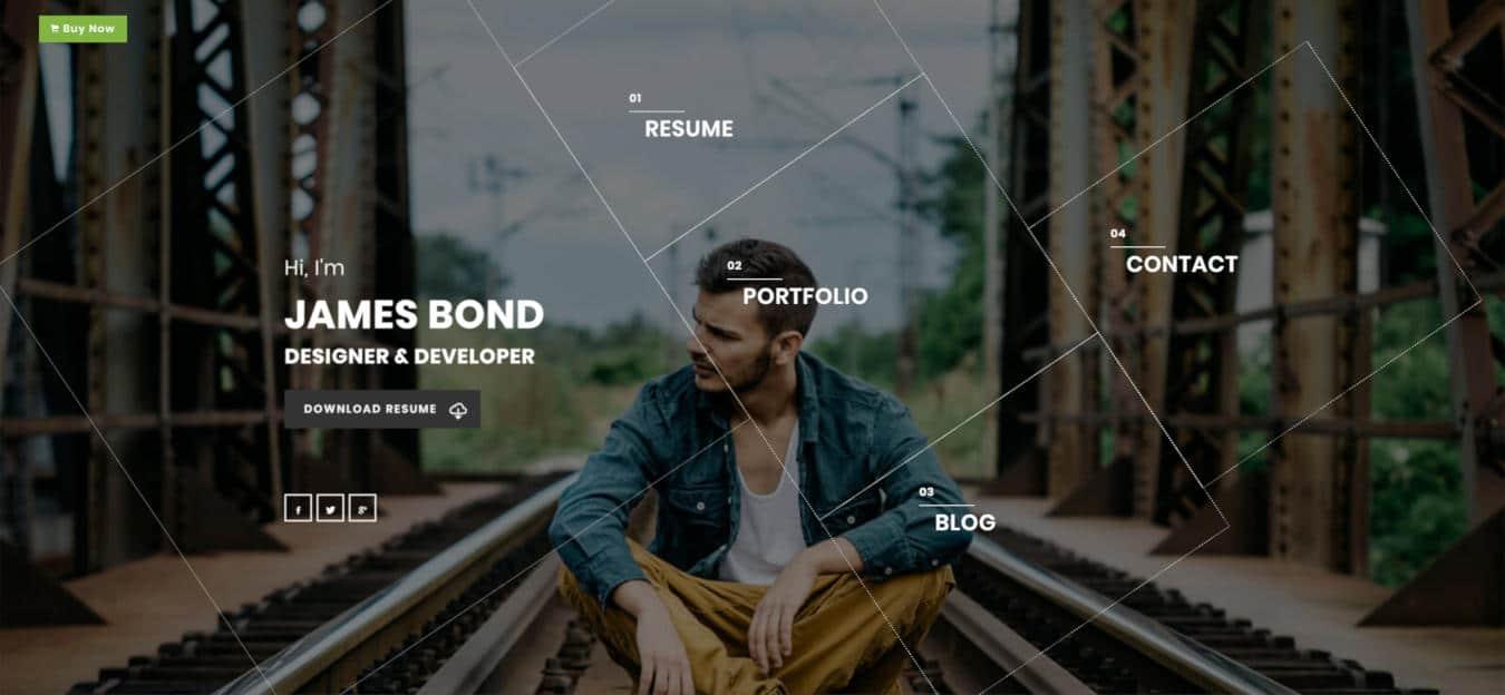 resume website templates alpha