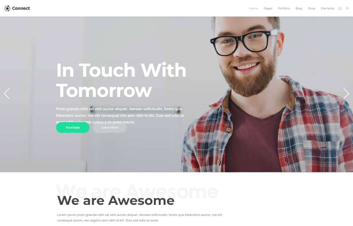 software company websites templates connect