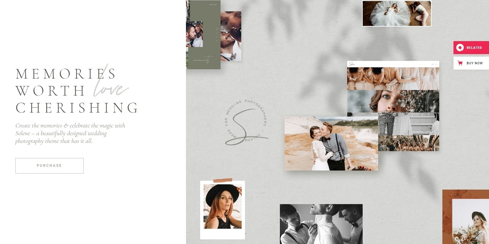 solene-photo-gallery-templates