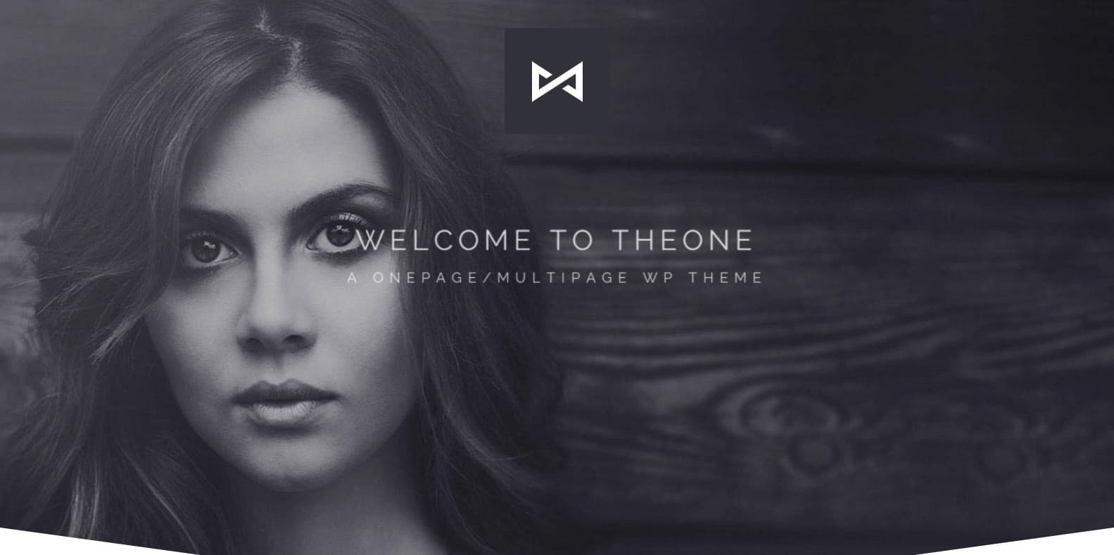 the-one-parallax-website-template