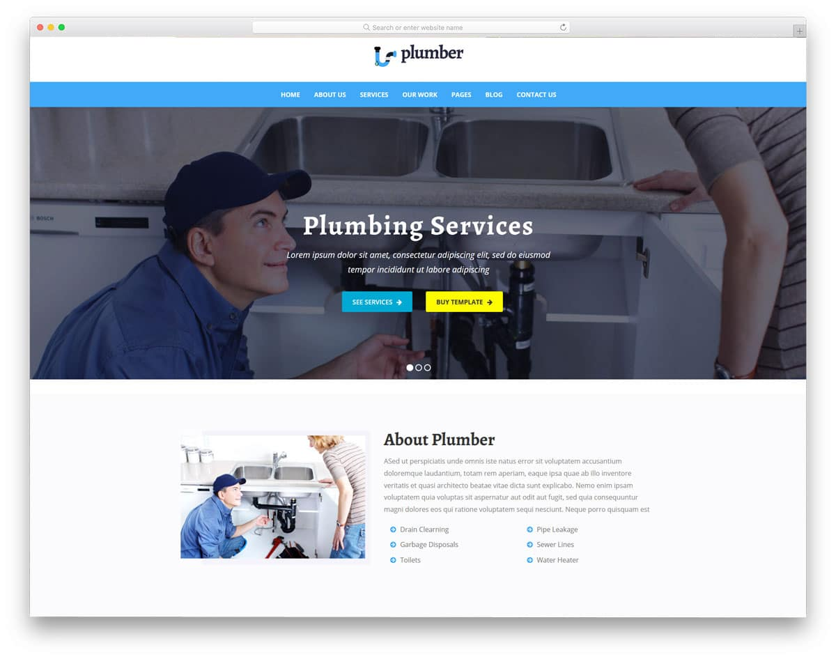 plumber wordpress themes with multiple demos