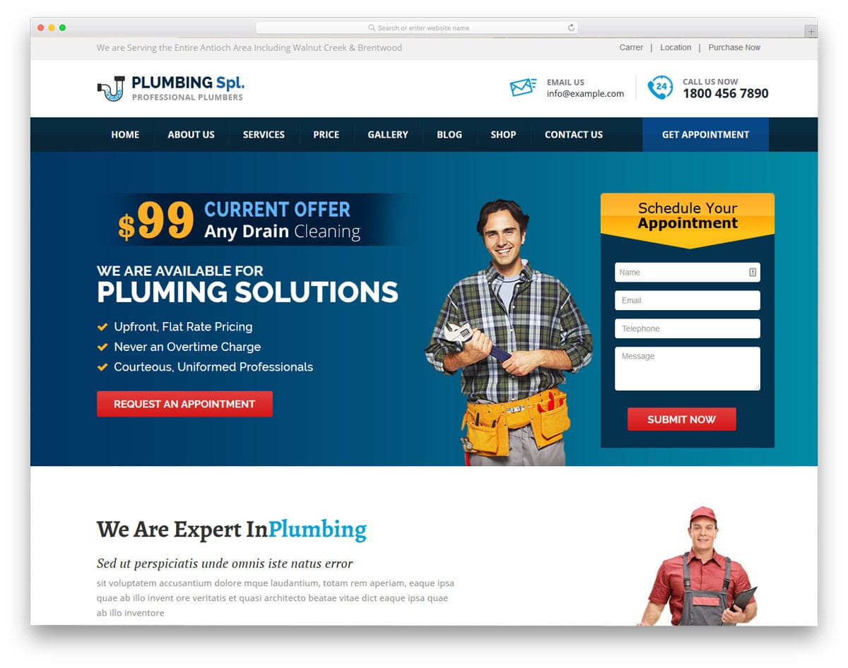 plumbing wordpress themes with promotional elements