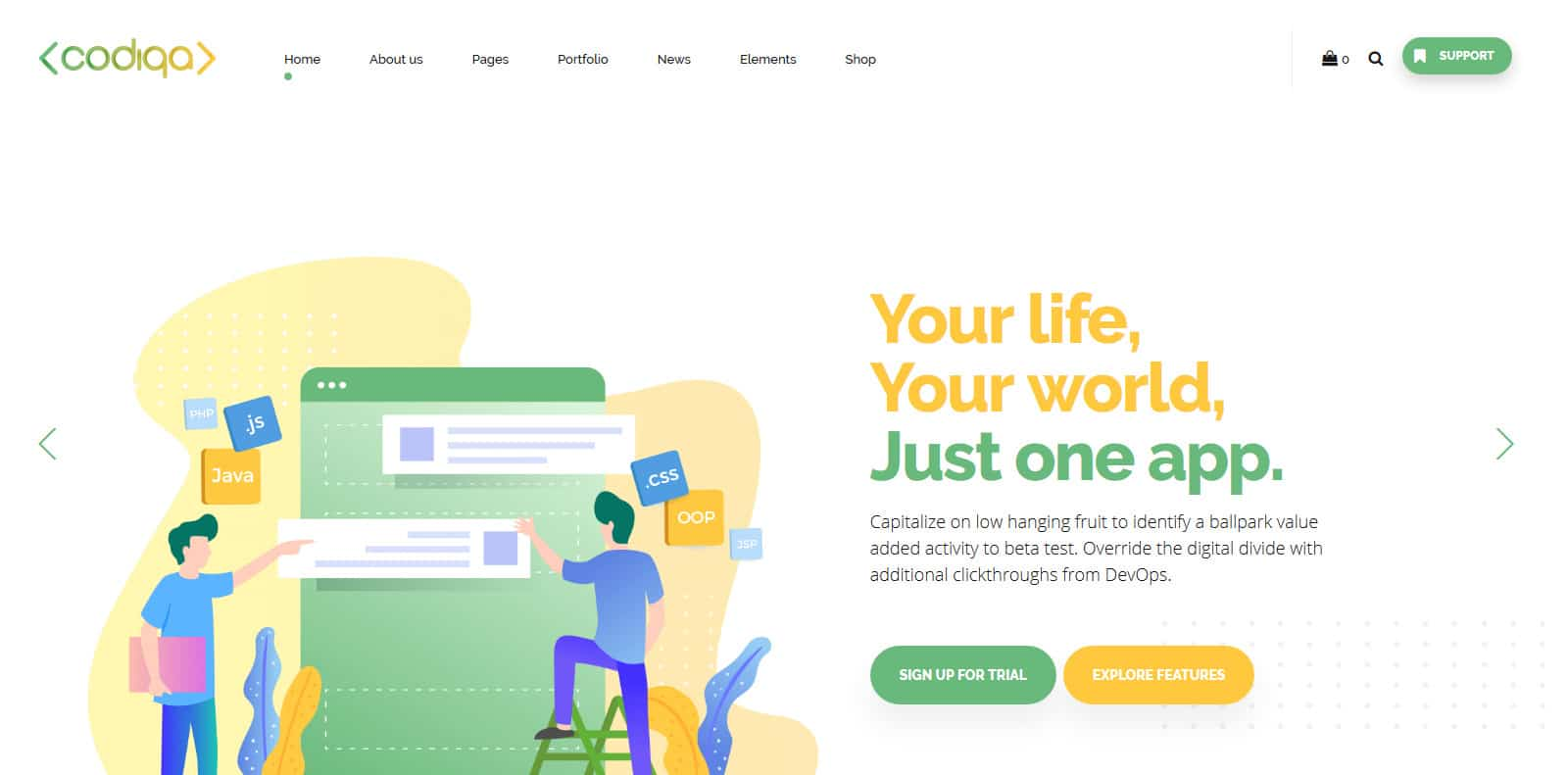 codiqa-software-website-template