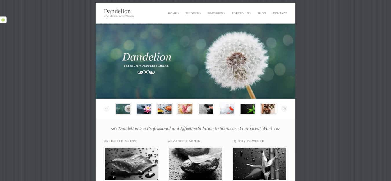 graphic design website templates dandelion