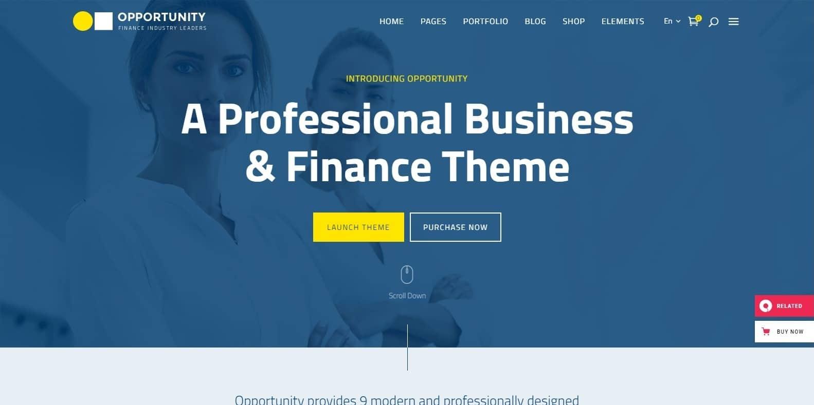 opportunity-finance-webaite-template