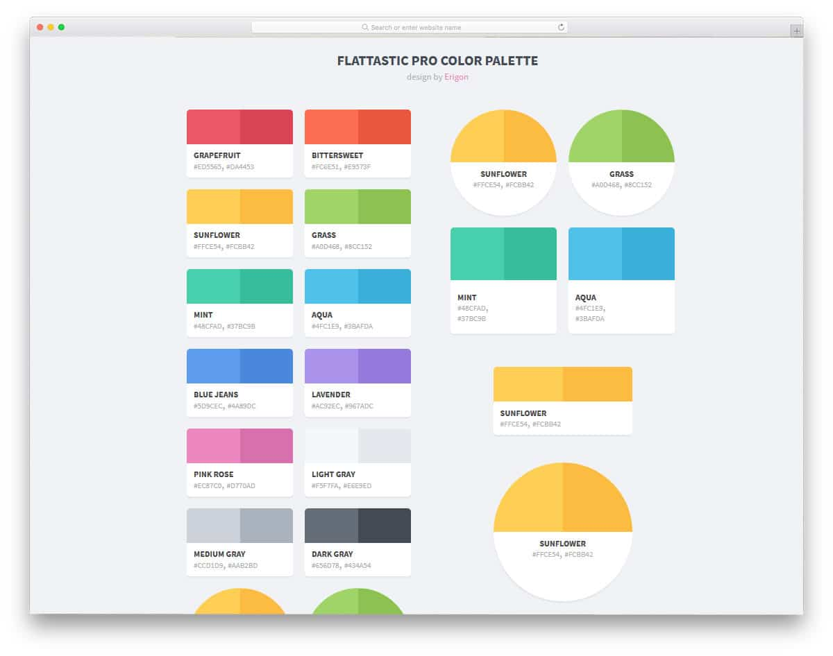 sqaure and circle shaped color palette