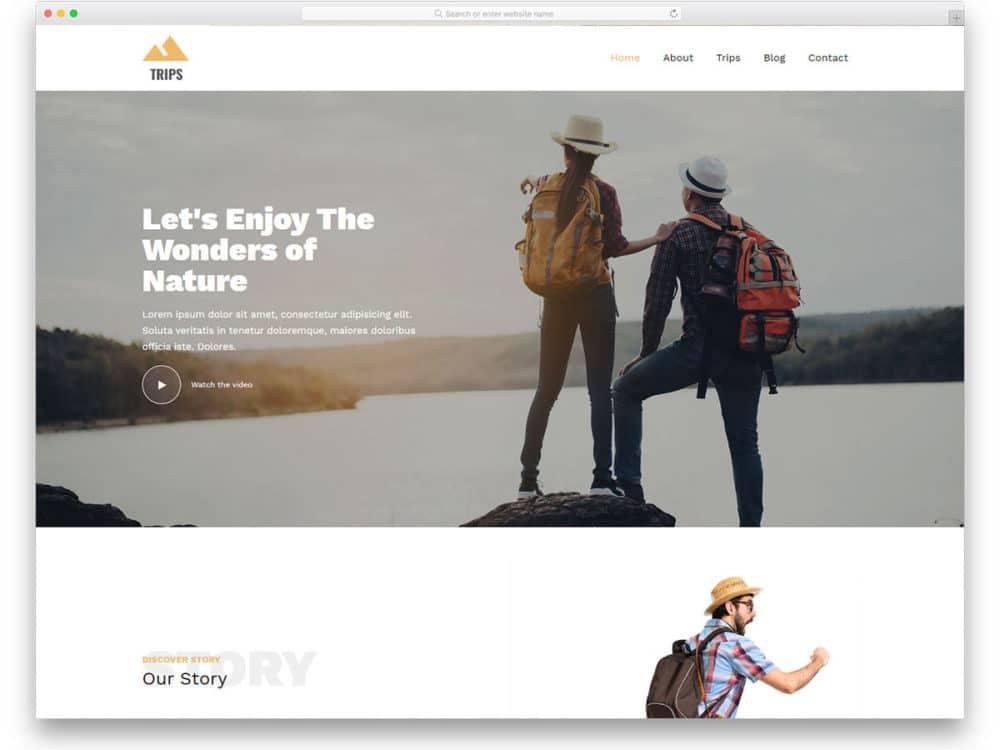 43 Free Clean Website Templates With Pristine Design 2020 Uicookies
