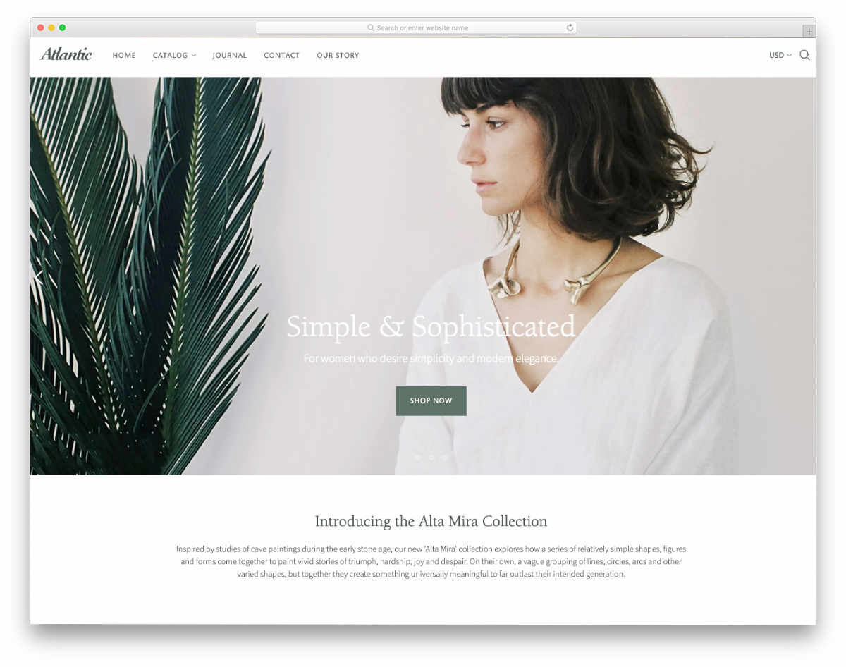minimal Shopify themes for single product websites