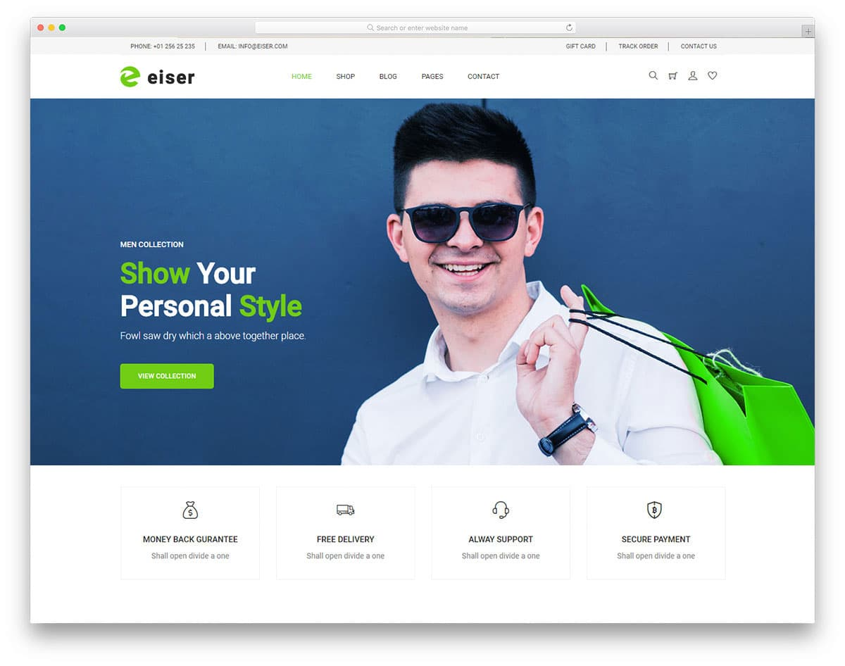 eiser website template image