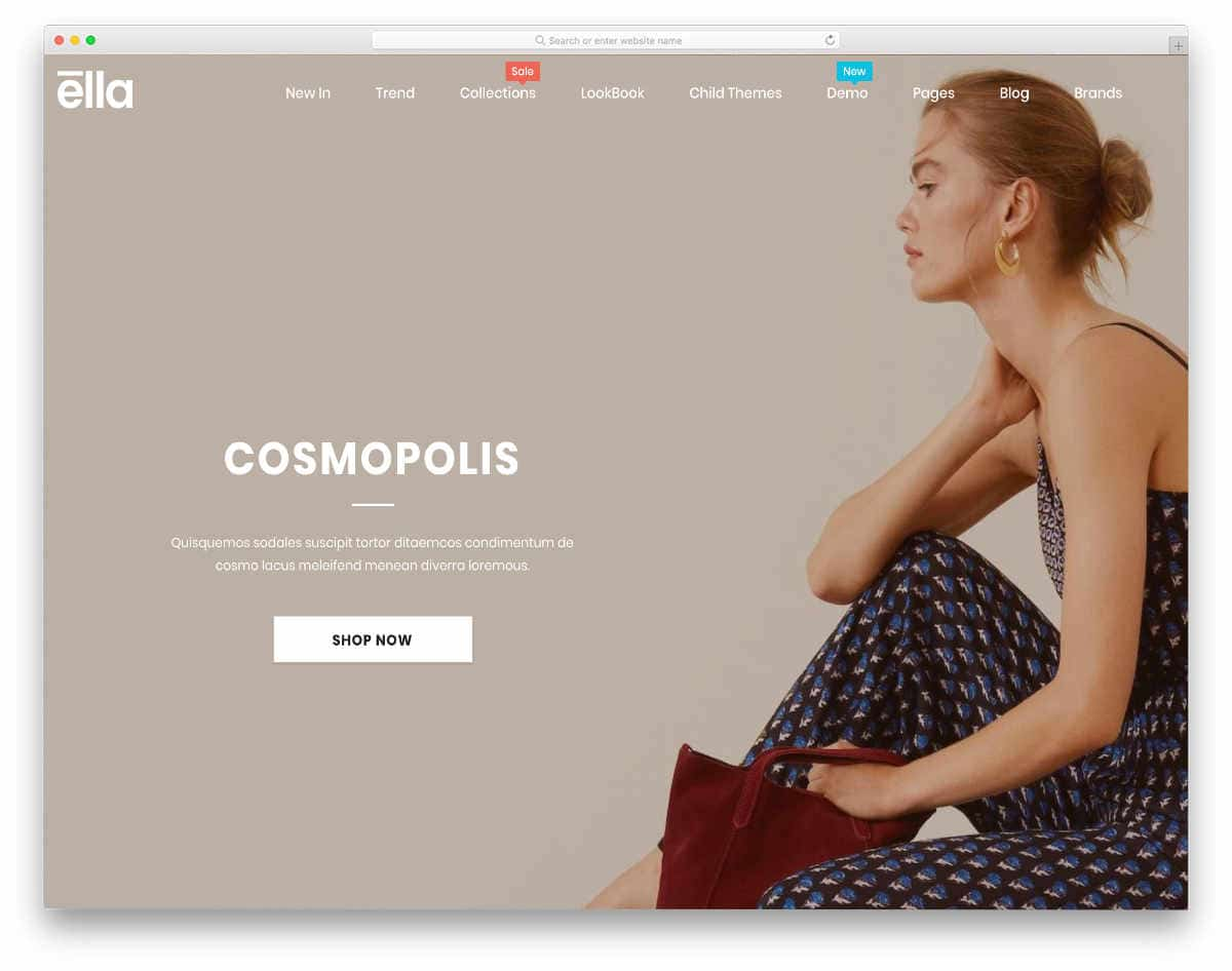 clean and rich looking shopify theme