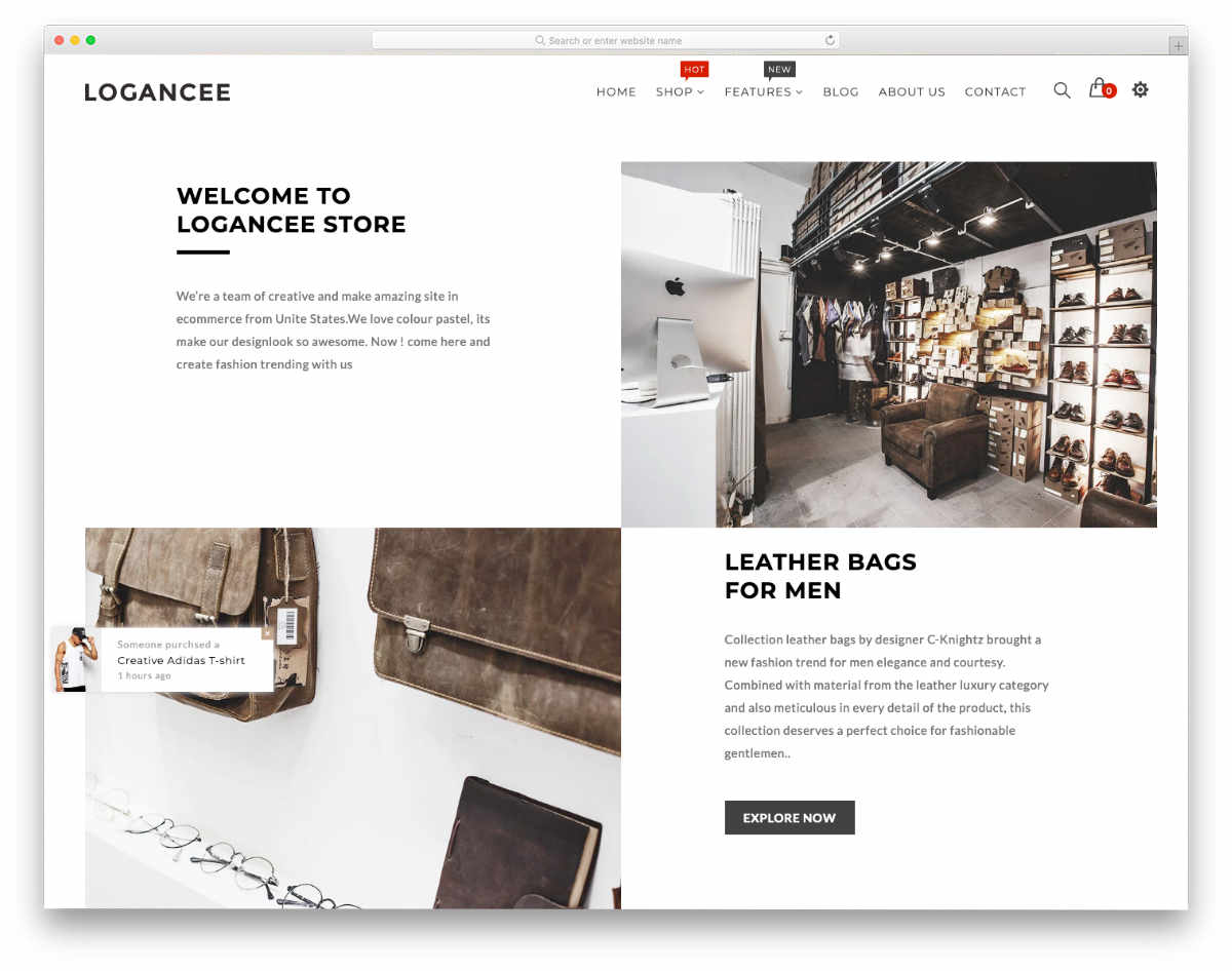 minimalistic style shopify theme