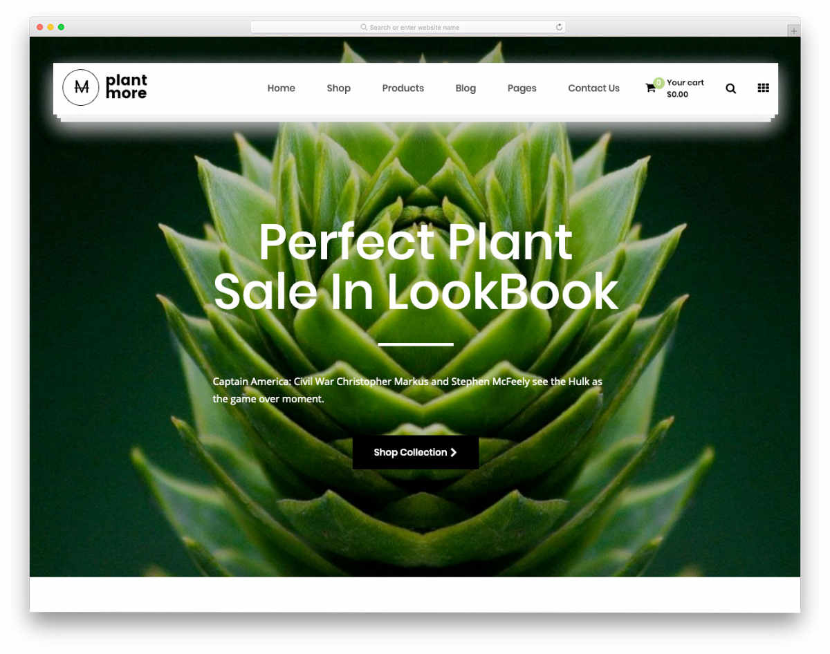 shopify theme for online nursery stores