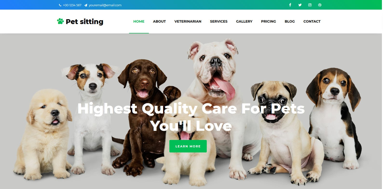 pet-sitting-animal-website-template