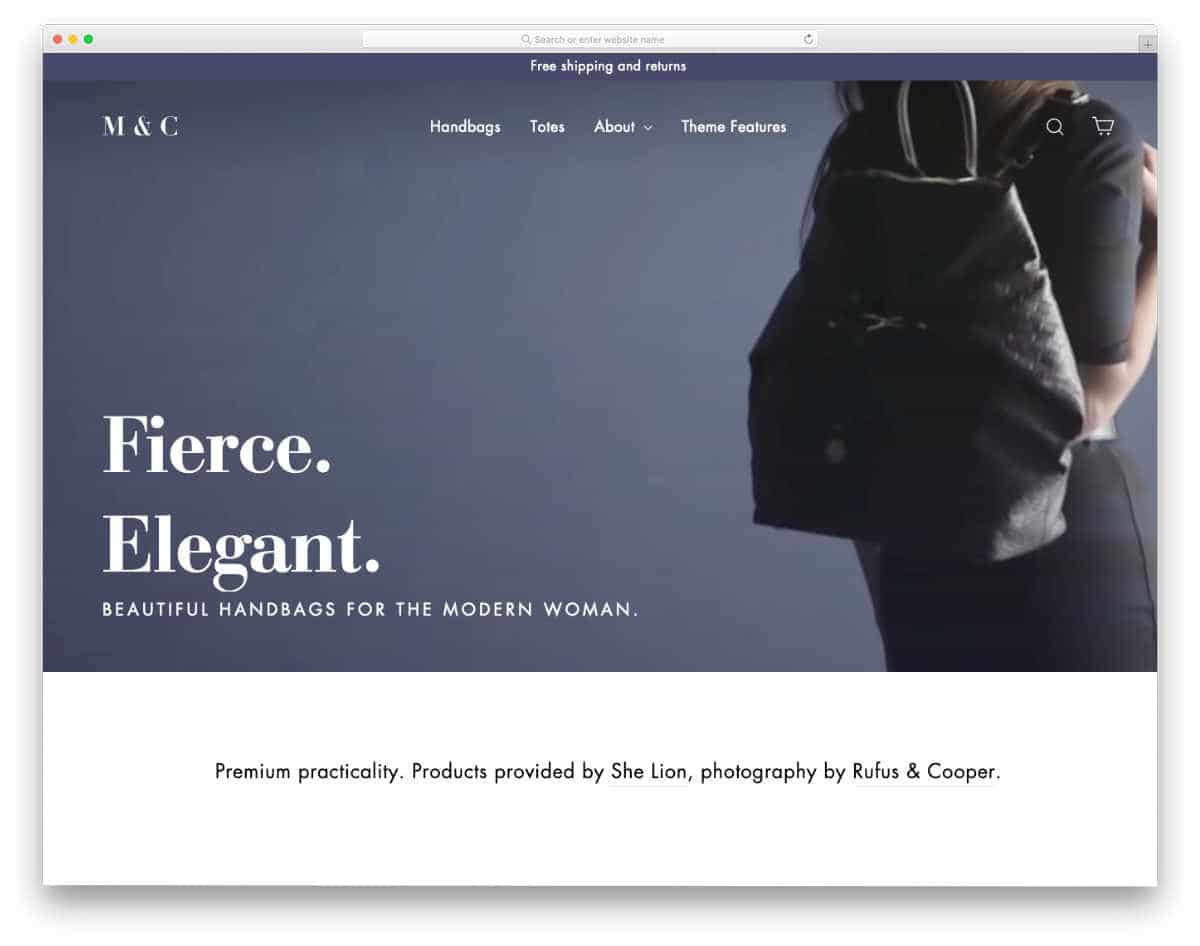 shopify theme with video background