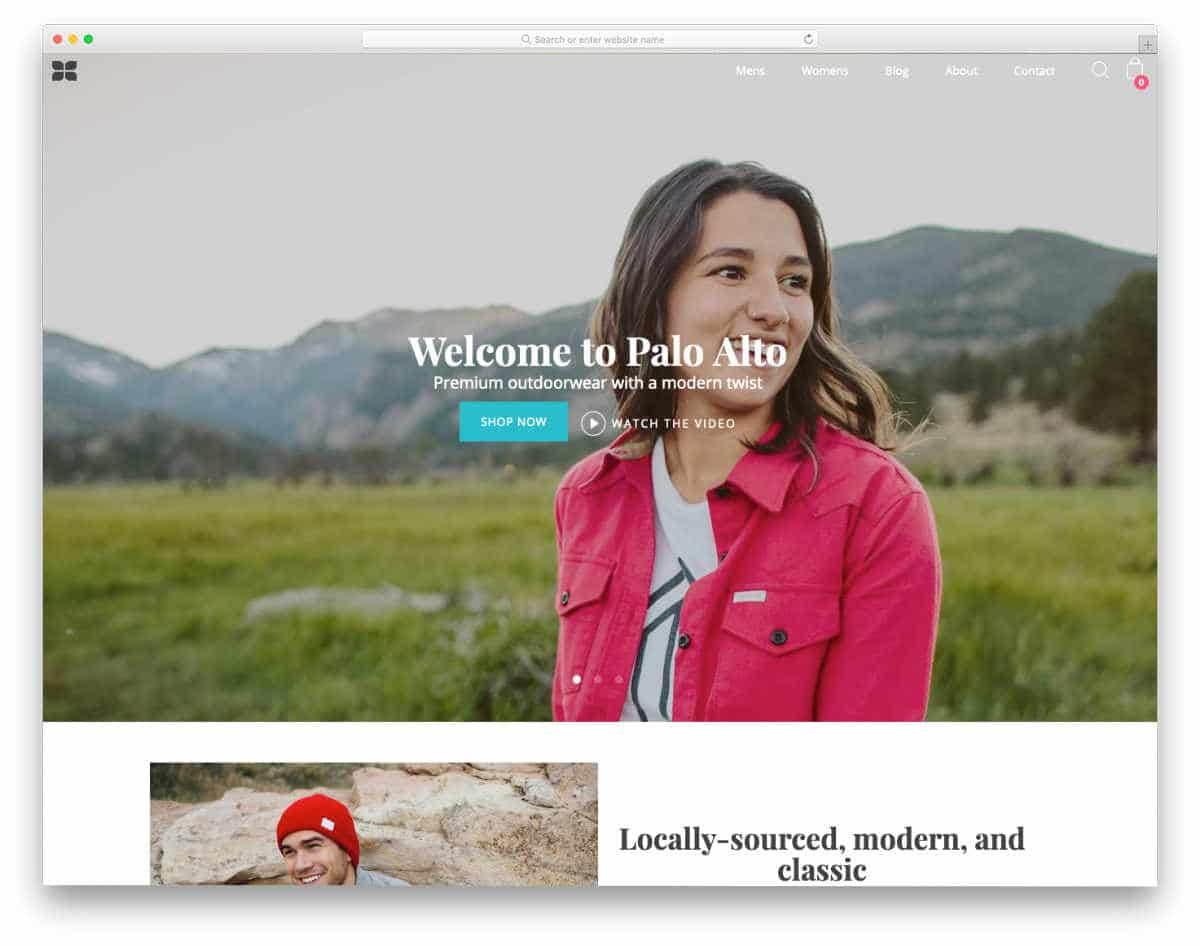 Shopify theme for small stores