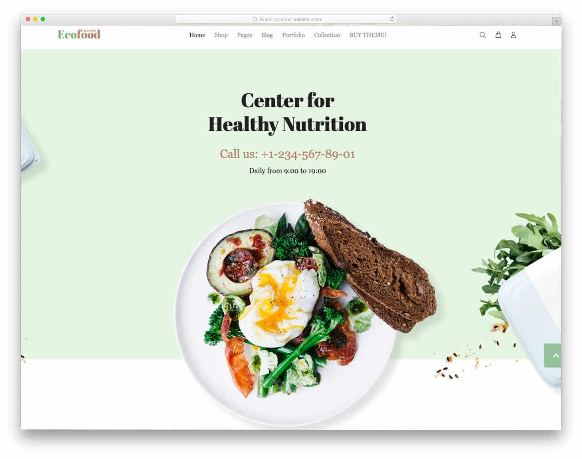 colorful Shopify restaurant themes