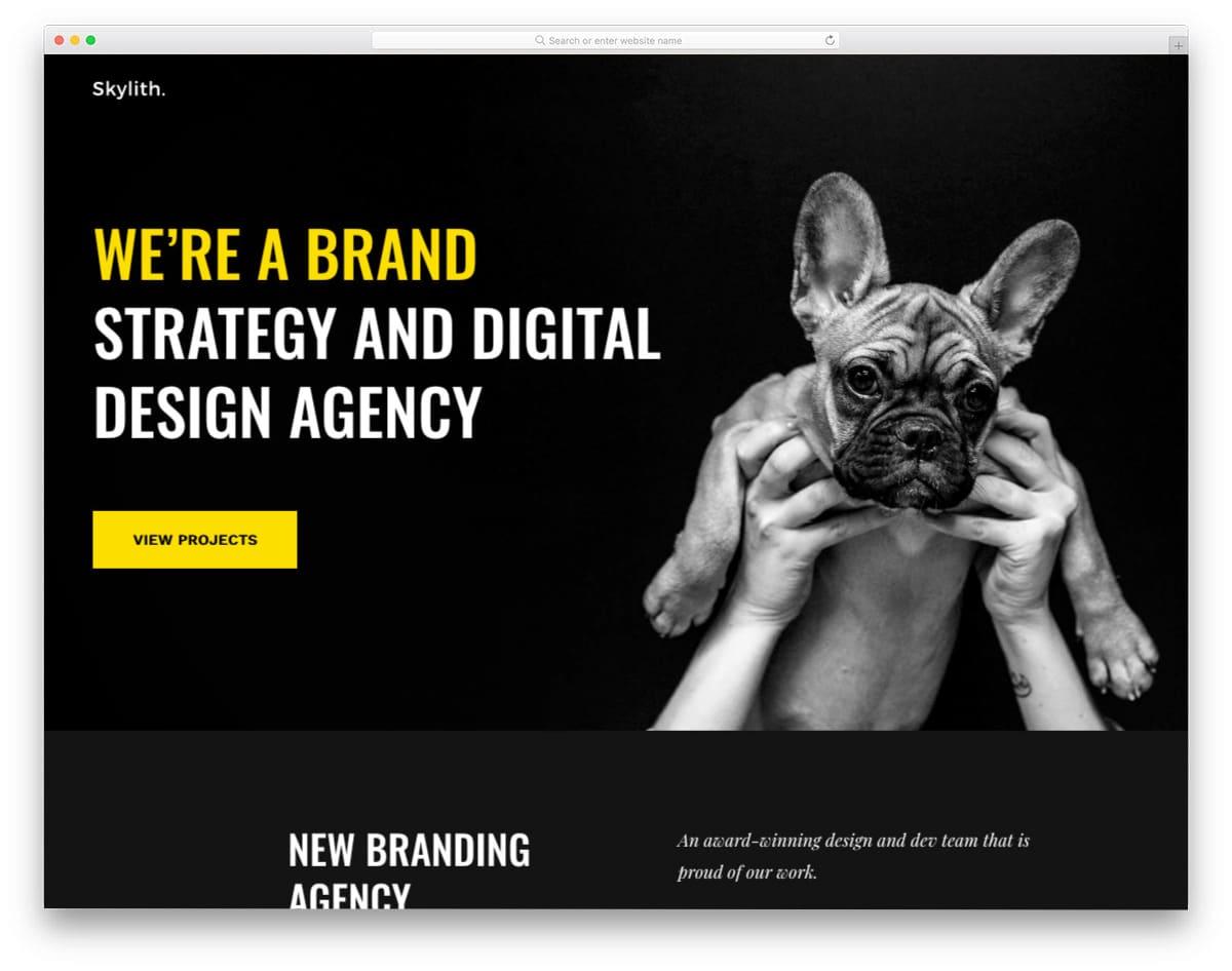 classy looking website template