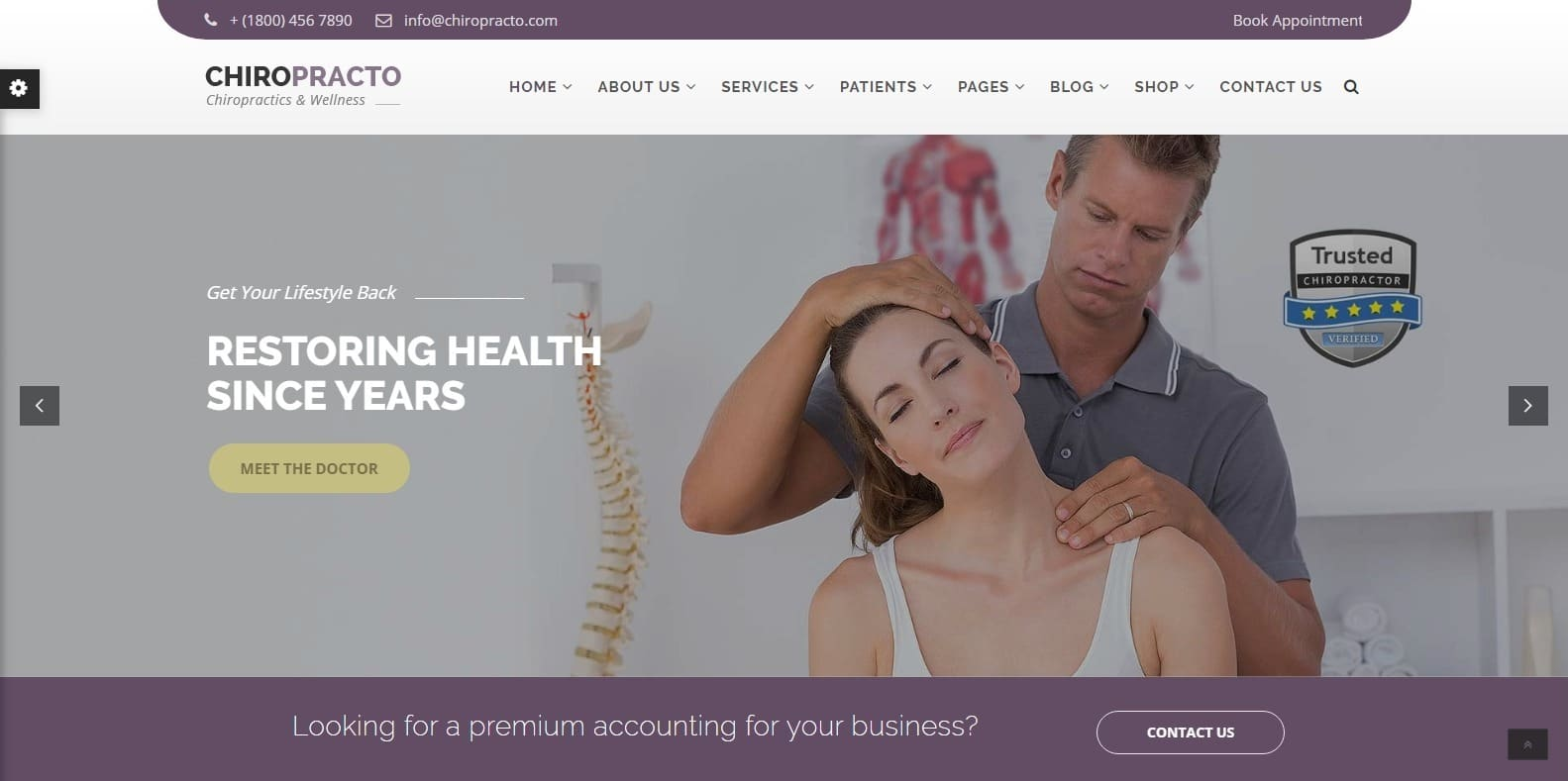 chiropracto-wordpress-physical-therapy-website-template