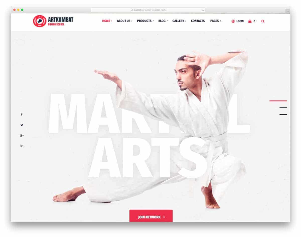 clean modern martial arts website templates