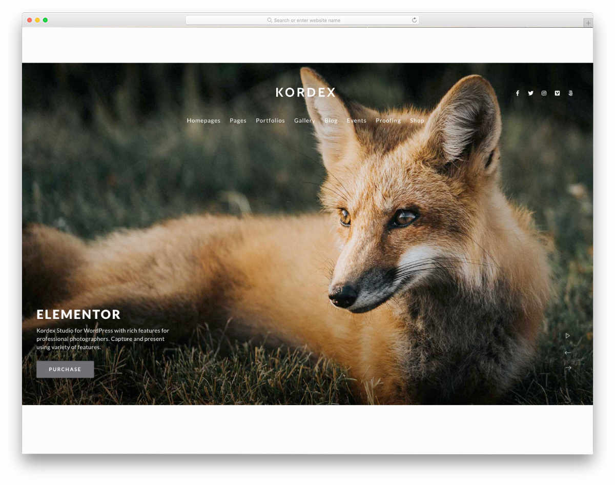 simple and elegant website template