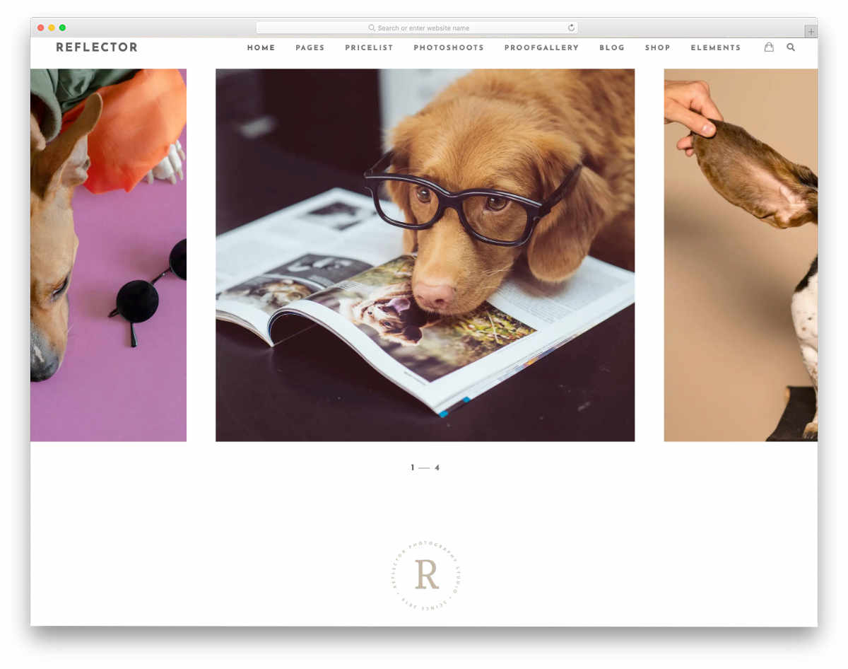 Fake Website Templates for photography studios