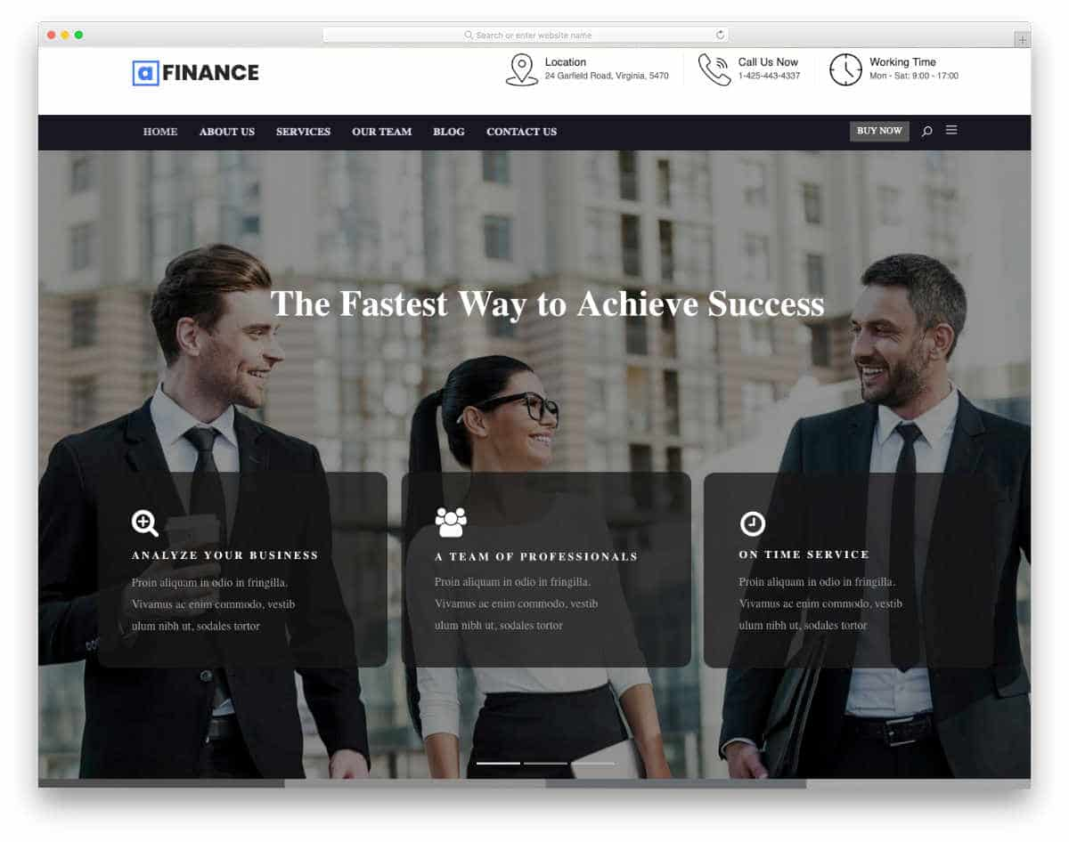 conventional style tax service website templates