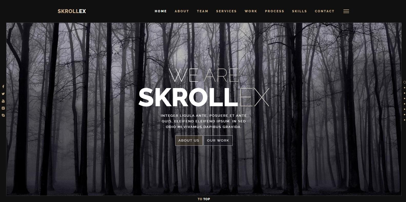 skrollexdark-bootstrap-template