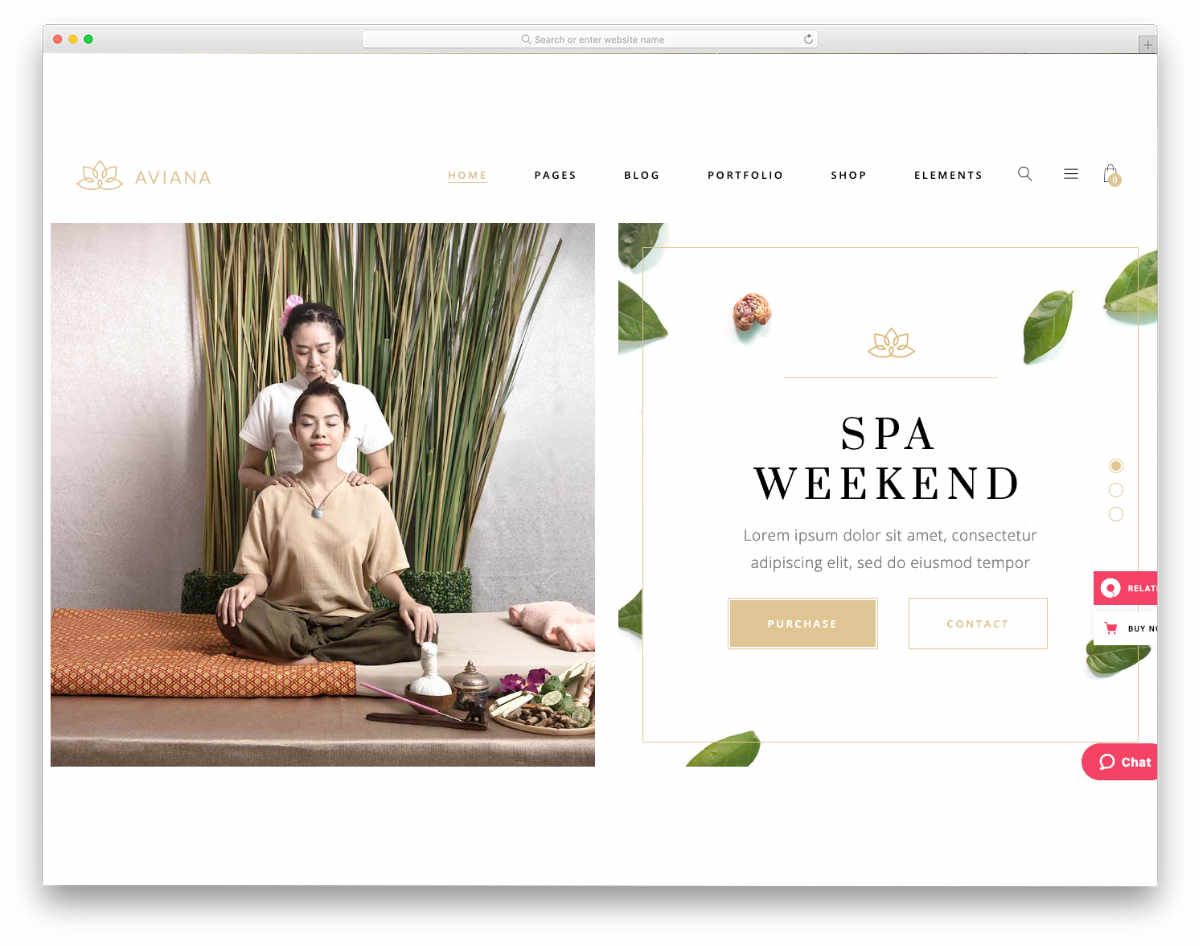 interactive acupuncture website templates