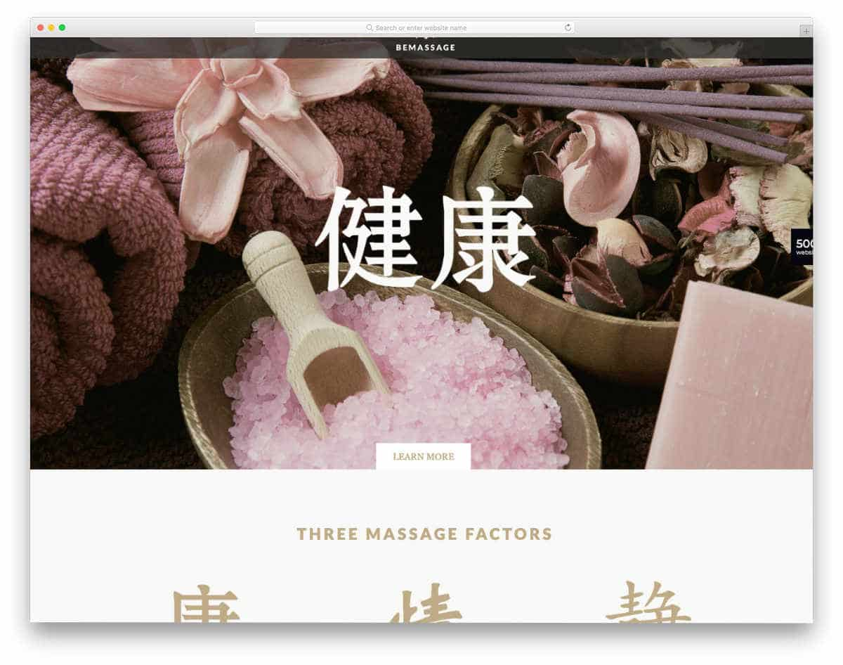traditional looking acupuncture website templates
