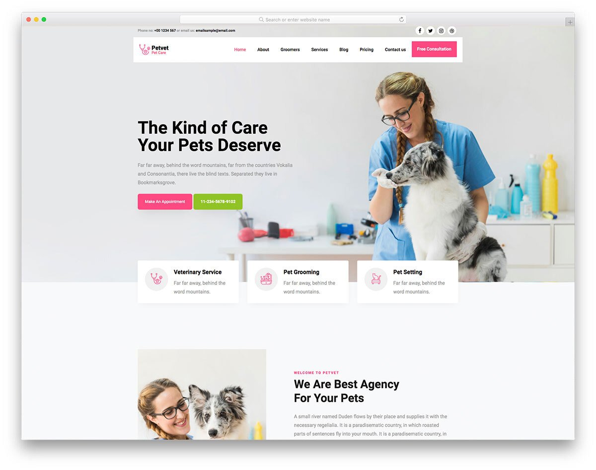 animal and pet healthcare website template