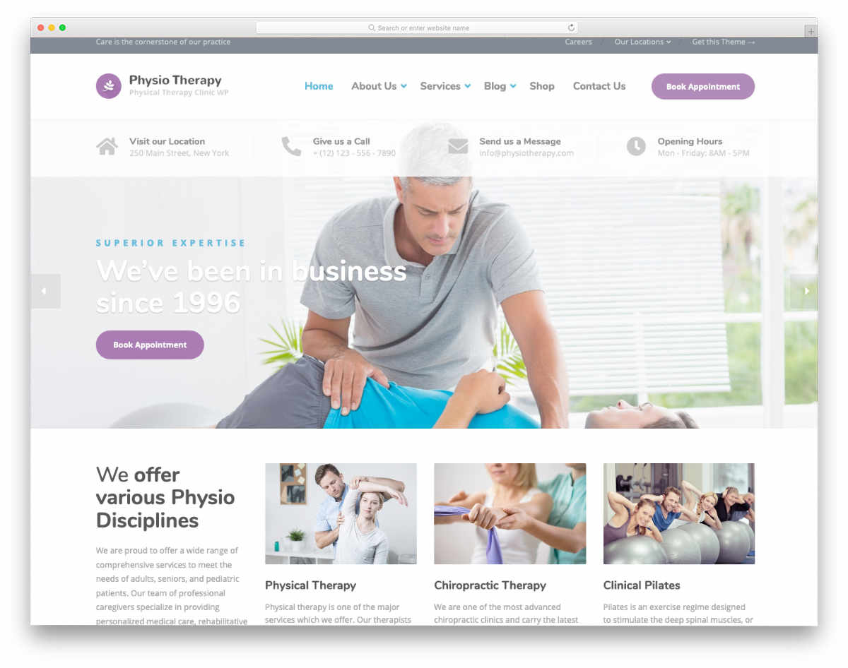 easy to customize acupuncture website templates