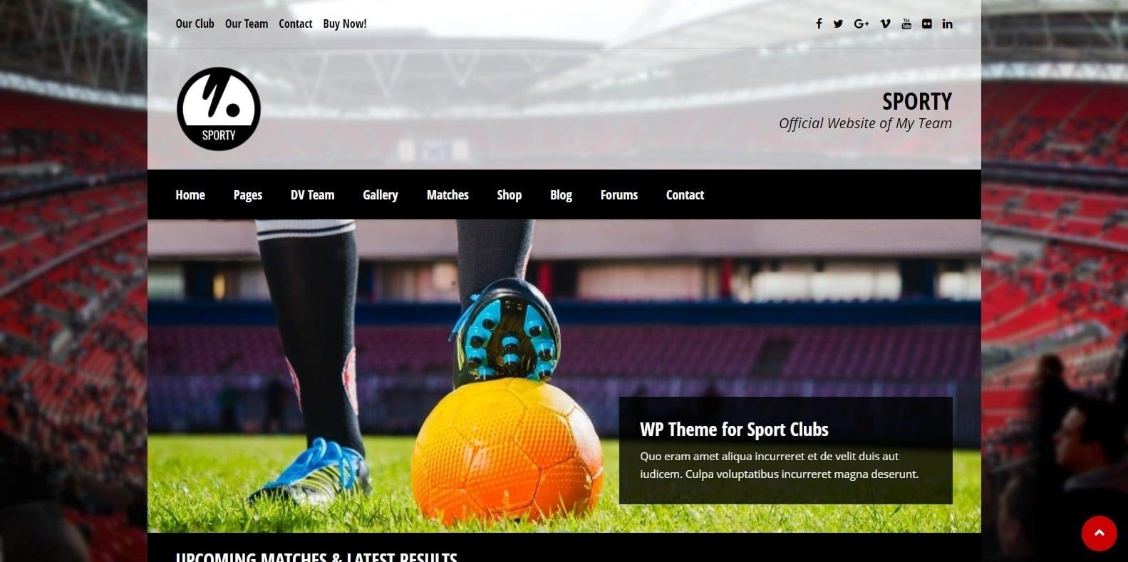 sporty-softball-website-template-wordpress