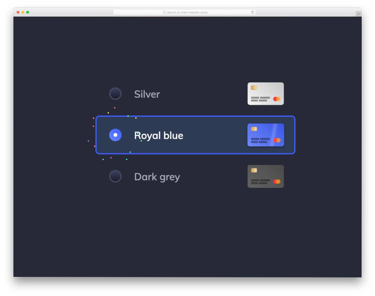 radio button for selecting credit card type