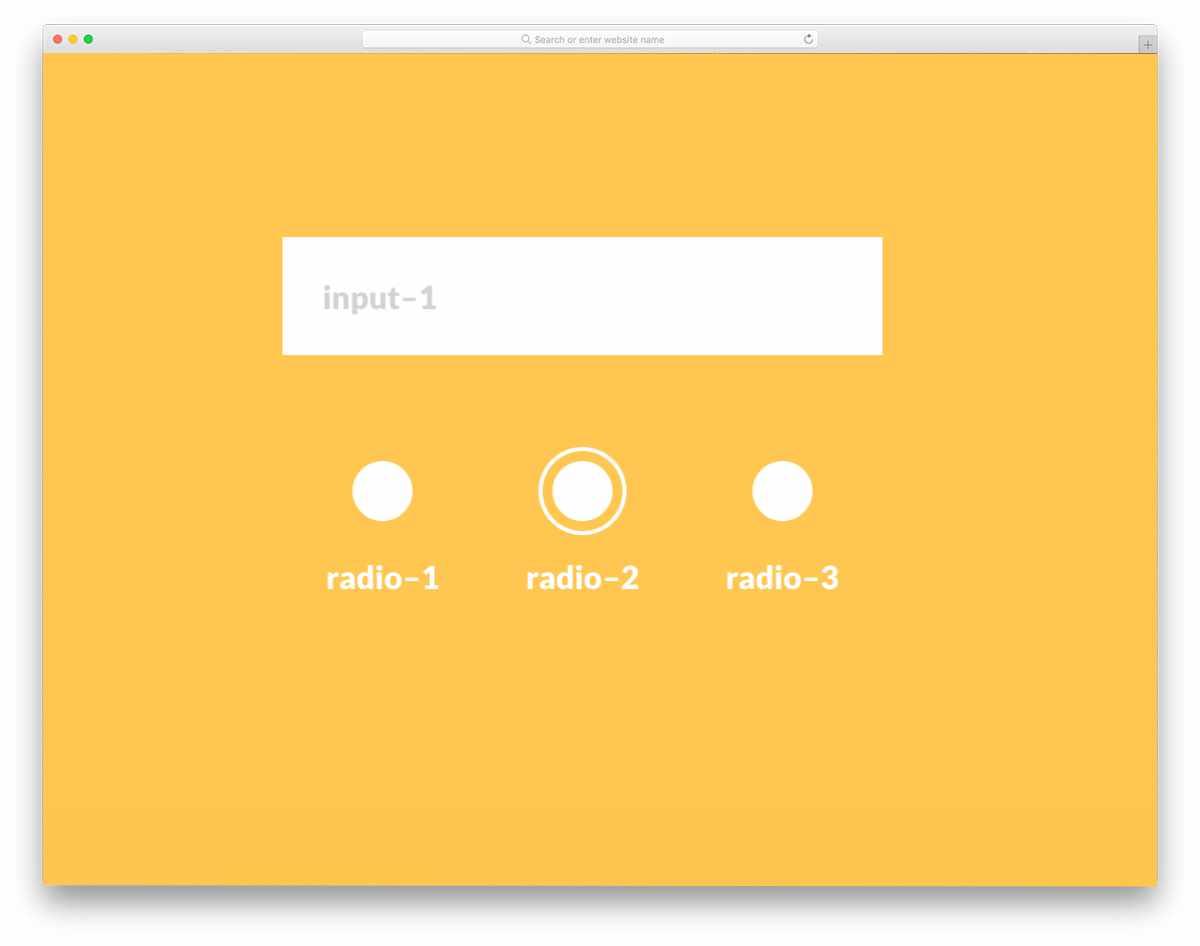 simple radio button input design