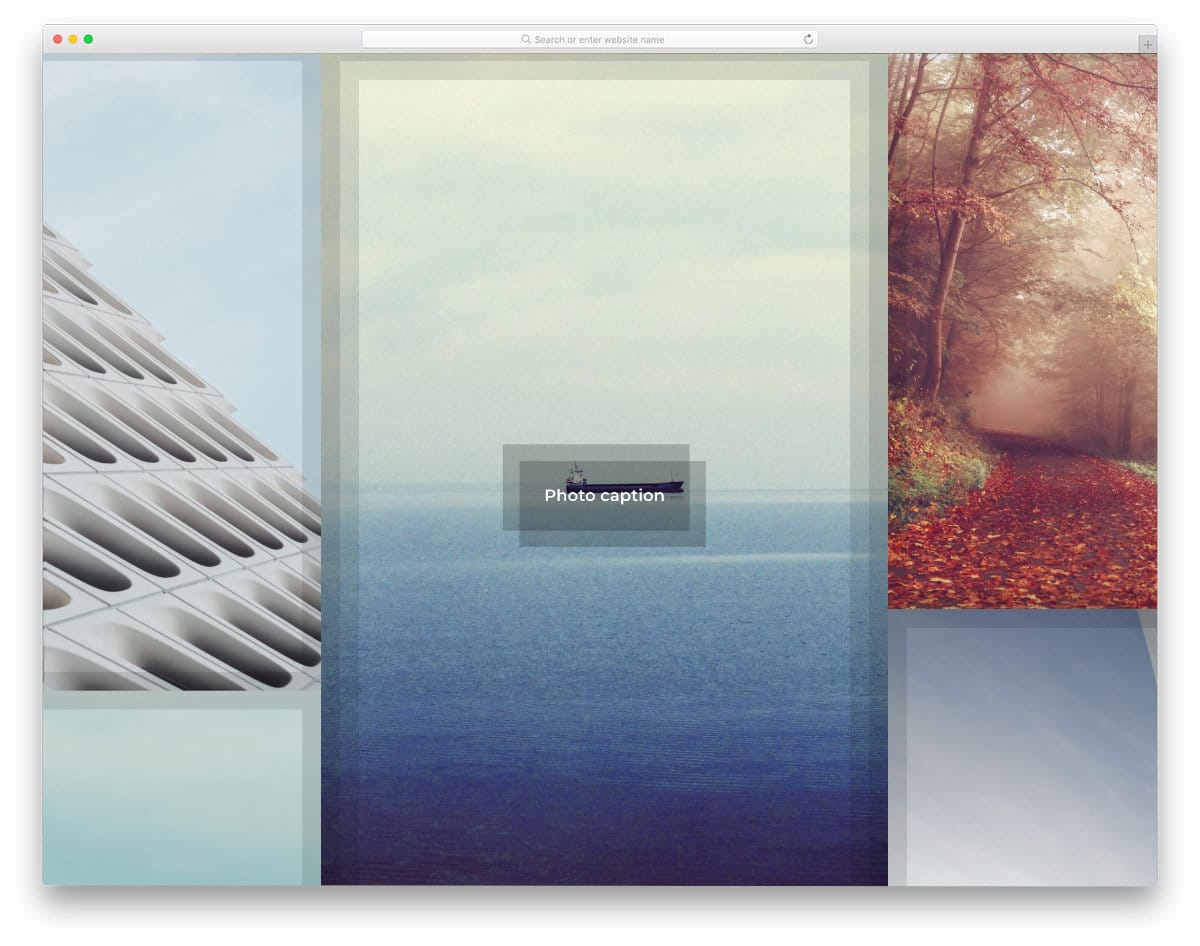gallery with hover animations