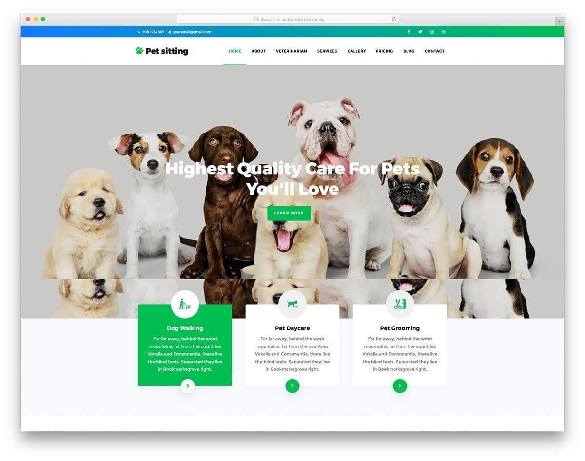 content-rich website template