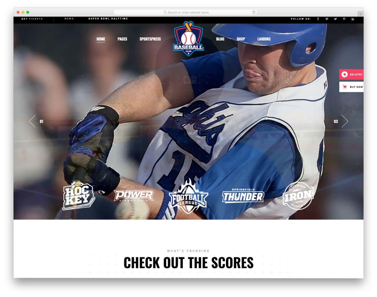 feature-rich baseball wordpress themes